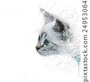White Kitten portrait watercolor 24953064