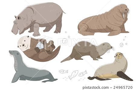 animal, colorful, hippopotamus 24965720