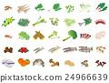 矢量 淡水魚 山野菜 24966639