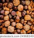 Different kinds of nuts in shells 24968349