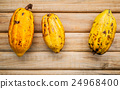 Ripe Indonesia's cocoa pod  setup on rustic wooden 24968400