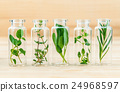 The bottle of essential oil with herbs. 24968597