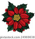 Christmas flower poinsettia 24969638