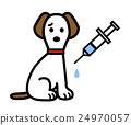 狗接种疫苗 24970057