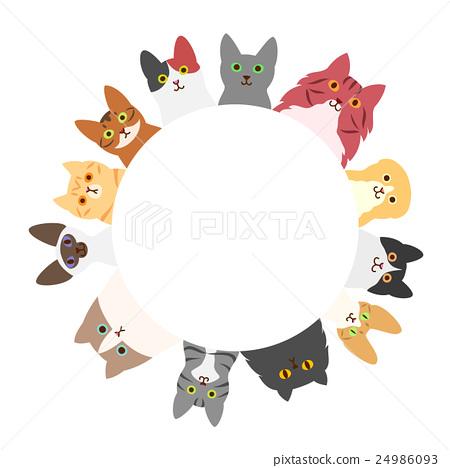 貓的圈子 24986093