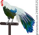 닭 (닭띠)의 일러스트 소재 24995525