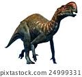 恐龙 史前 三维 24999331