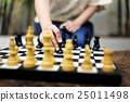 Chess Game Thinking Hobbies Leisure Concept 25011498