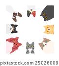 cat, pussy, square 25026009