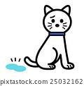 cat, pussy, urine 25032162