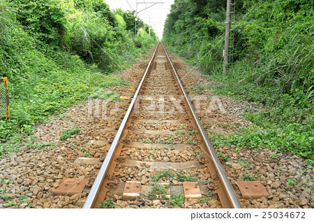 line 25034672