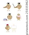 貓頭鷹 一套 變體 25035962