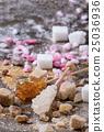 Variety of sugar 25036936