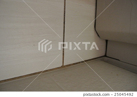 真實的!浴室的黴菌 25045492