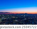 富士和东京中心的夜景 25045722