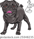 vector sketch cute dog black pug breed 25048235