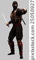 Ninja 25050927