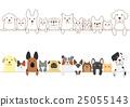 dog, dogs, cat 25055143