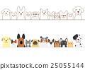dog, sets, set 25055144