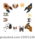 dog, facial, face 25055146