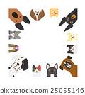 dog, dogs, cat 25055146