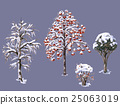 Winter Trees and Shrubs 25063019