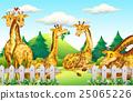 动物 长颈鹿 矢量 25065226