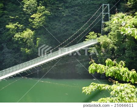 秩父秩父湖吊橋 25066611