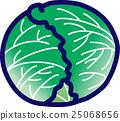 矢量 蔬菜 春蔬 25068656