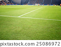 football field 25086972