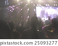 Crowd at concert 25093277