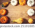 blank, expression, pumpkin 25101685