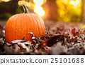 pumpkin, falling, leafe 25101688