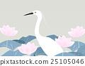 鳥兒 蓮花 開花 25105046