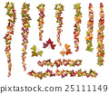 Set of brushes autumn ivy vine branches 25111149