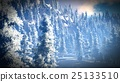 Snow covered Christmac forest in mountains 3d 25133510