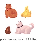 Fat, chubby cat, dog, chicken and hamster 25141467
