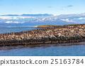 Bird Island near Ushuaia 25163784