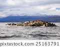 Seal Island near Ushuaia 25163791