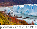 The Perito Moreno Glacier 25163919
