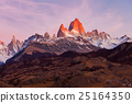 Fitz Roy mountain, Patagonia 25164350