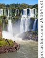 The Iguazu Falls 25164531