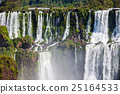 The Iguazu Falls 25164533