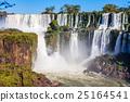 The Iguazu Falls 25164541