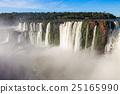 The Iguazu Falls 25165990