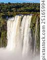 The Iguazu Falls 25165994