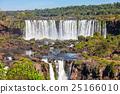 The Iguazu Falls 25166010