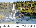 The Iguazu Falls 25166014