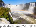 The Iguazu Falls 25166019
