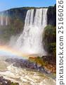 The Iguazu Falls 25166026